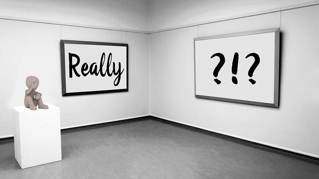 Galerie sztuki i placówki szerzące kulturę