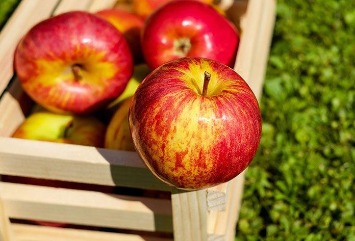 3 cechy dobrej skrzyni na jabłka