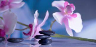Zdrowie i oczyszczenie organizmu