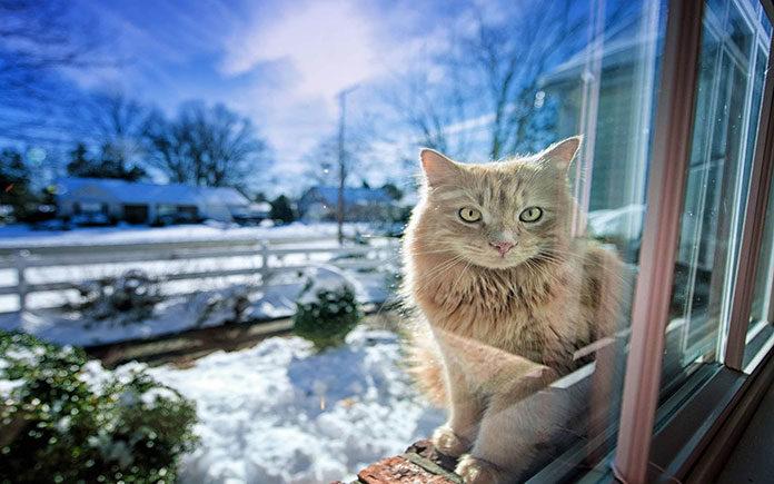 Jakie zalety mają okna przesuwne?